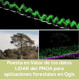 """Curso práctico online: """"Puesta en valor de datos LiDAR del PNOA para aplicaciones forestales en Qgis"""""""
