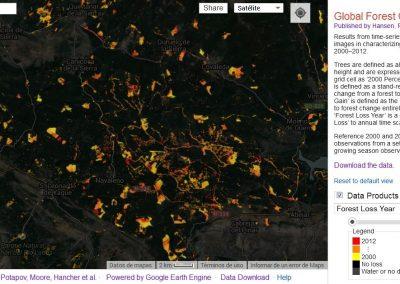 Goblal Forest Change: un proyecto global que detecta pérdidas de bosque