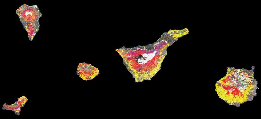 Cartografía de alta resolución de modelos de combustible forestal: metodología de bajo coste basada en datos LiDAR