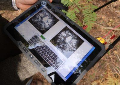 FORESTEREO: aplicación de nuevas herramientas para la caracterización de combustibles forestales