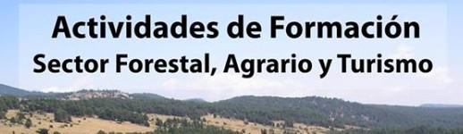 formacion-clm-cabecera