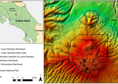 """Article published in the scientific journal """"iForest. Biogeosciences and Forestry"""""""