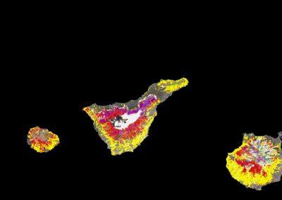 Cartographie des modèles de combustible forestier des Canaries à partir de données LiDAR aériennes