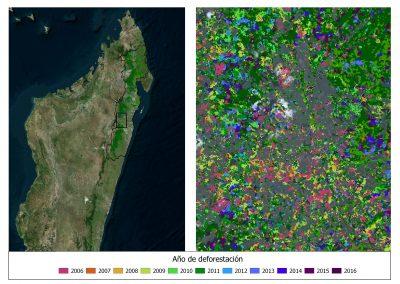 Cuantificación de emisiones en el marco del programa REDD+ en Madagascar