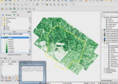 Formation QGIS et LiDAR pour l'évaluation des écosystèmes forestiers