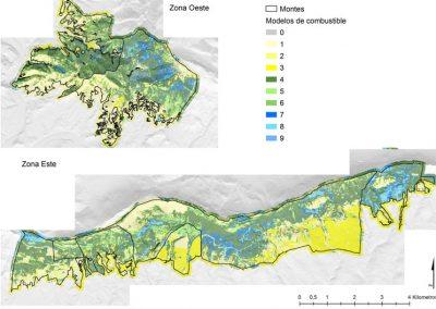 Selvicultura preventiva de incendios en la Sierra de Cantabria (Álava)