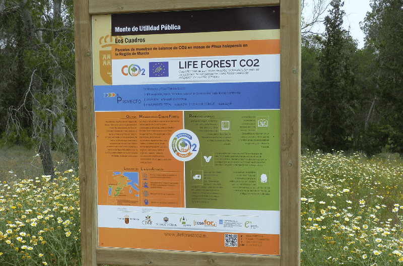 LIFE FOREST CO2