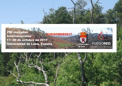 Participación y asistencia a las VII Jornadas Internacionales del grupo FuegoRED