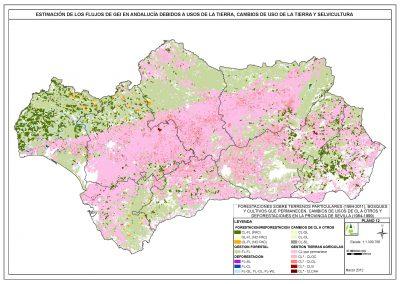 Servicio para el estudio de estimación de flujos de GEI en Andalucía debidos a usos de la tierra, cambios de uso de la tierra y selvicultura
