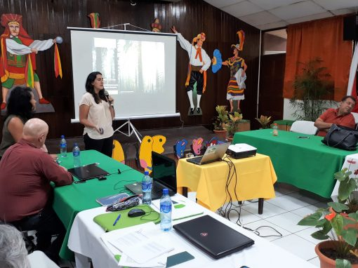 Technical assistance with the carbon accounting in Nicaragua's REDD+ programme within the framework of the FCPF