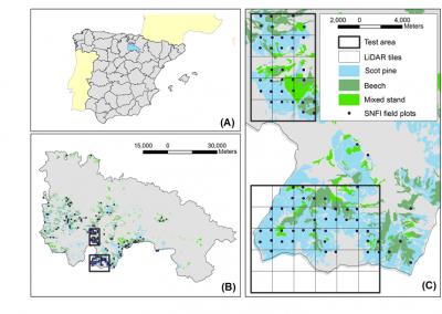 Publicado artículo sobre generación de inventarios forestales continuos en parcelas del IFN con Landsat y LiDAR