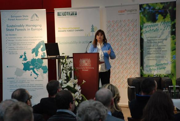 """Presentación de """"Forest-LidaRioja"""" en el Forest innovation workshop 2018"""