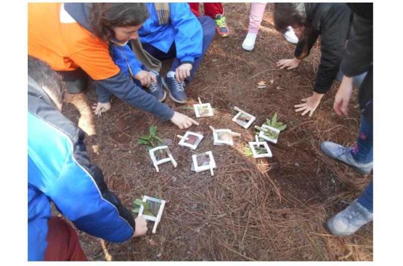 AGRESTA desarrolla una acción de Pedagogía Forestal en Canarias