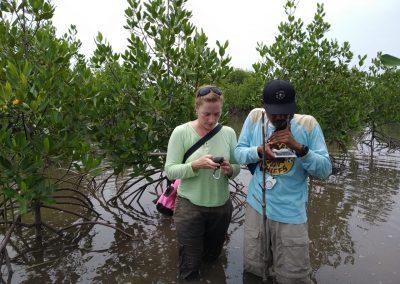 AGRESTA acompaña en el proceso de validación y verificación de un proyecto de restauración y protección de manglares en la isla de Sumatra (Indonesia)