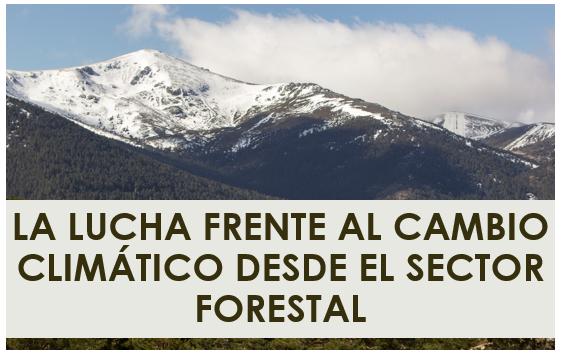 Jornada: «La lucha frente al cambio climático desde el sector forestal»