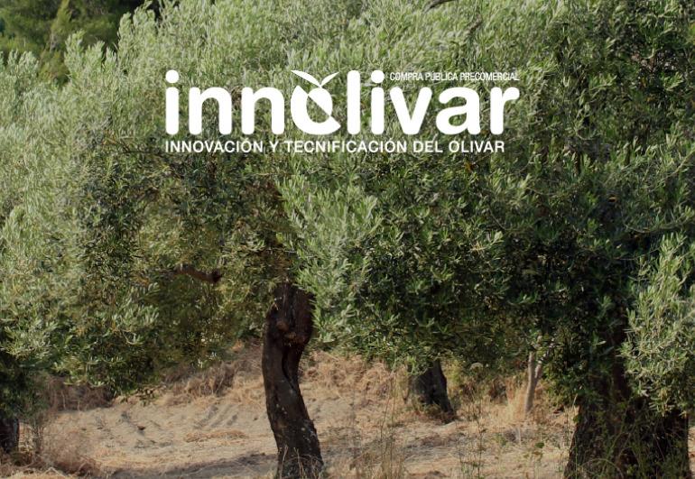 INNOLIVAR: soluciones para la lucha contra la erosión en el olivar
