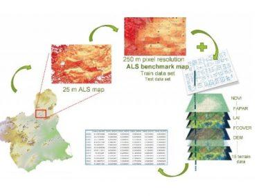 Cartografiado de carbono forestal como caso de estudio para Copernicus
