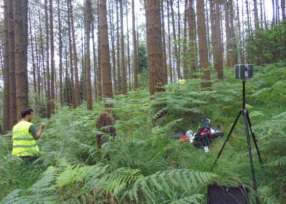 Jornada técnica sobre la gestión forestal orientada a la obtención de productos de calidad en masas de pino marítimo