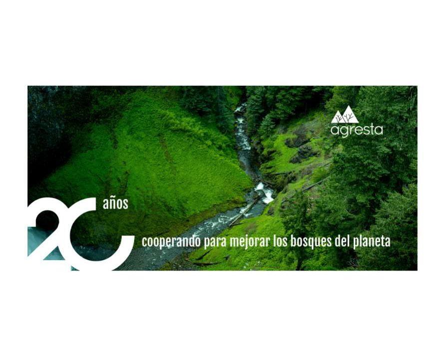 20 años cooperando para mejorar los bosques del planeta