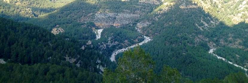 Integración de LIDAR y Sentinel‐2 para el inventario forestal dinámico en la provincia de Castellón